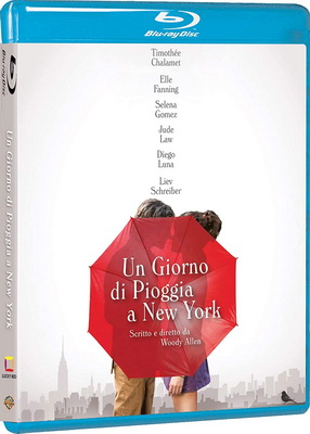 Un Giorno Di Pioggia A New York (2019).avi BDRiP XviD AC3 - iTA
